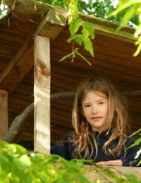 We Built Our Own Tree House: A Case Study