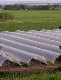 Repairing a Polytunnel