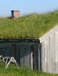 Construct a Green Roof